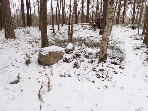 Ett av de mer tydliga odlingsrösena i området. Foto: Per Hallén 2013.