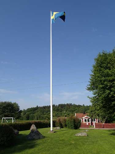 Flagga i domarringen