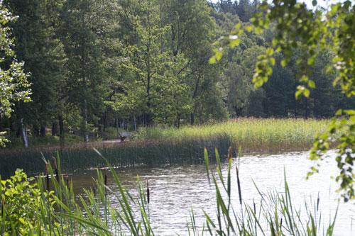 Stilla förmiddag vid Edsviken. Foto: Per Hallén 2014