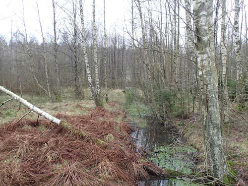 Det är blött i markerna kring Kalvkärr. Foto: Per Hallén 2014
