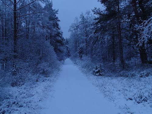 Stans väg. Foto: Per Hallén 2014