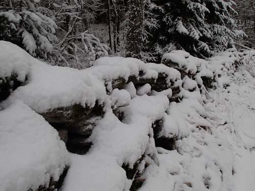 Äldre hägnad nära Delsjökärr. Foto: Per Hallén 2014