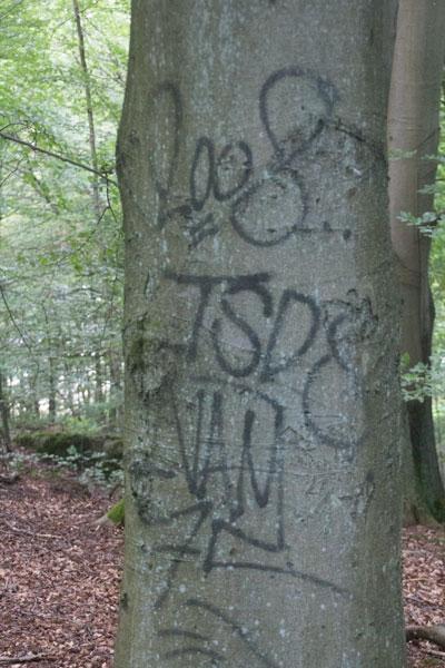 Idag används andra metoder att klottra på träden i området! Foto: Per Hallén 2015