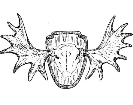 """Huberts krona - illustration ur """"Upptäck Delsjön"""""""