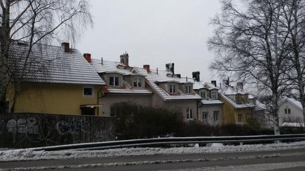 En av radhuslängderna 2016. Foto: Per Hallén