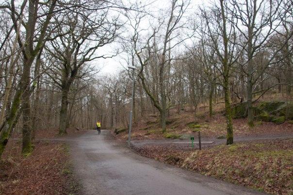 Till vänster om vägen ned mot Apsätten, där cyklisten passerar, låg torpet Sandhåla. Foto: Per Hallén 2016