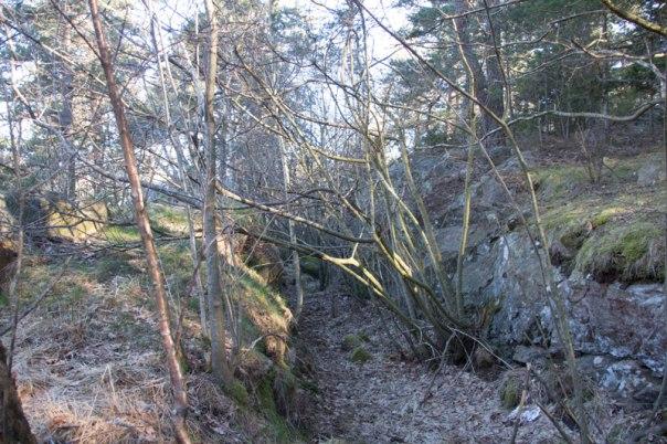 Kanalen in till dammen är idag övervuxen, men ändå tydlig. Foto: Per Hallén 2016