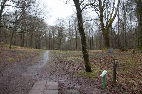 Denna öppna yta var tidigare Sandhålas åkermark. Foto: Per Hallén 2016.