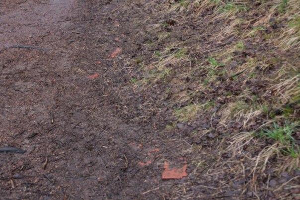 Den som är uppmärksam kan ännu se spåren av Korpås i marken, här några tegelrester. Foto: Per Hallén 2016