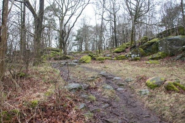 Här passerar stigen i riktning mot Apslätten rakt igenom grunden till stugan. Foto: Per Hallén 2016.