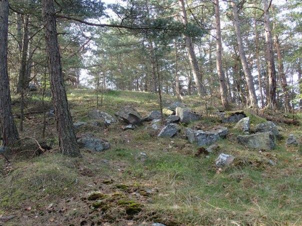 En bit ned i sluttningen ligger fler stenar som tidigare utgjorde grunden för Blå Tornet. Foto: Per Hallén 2016.