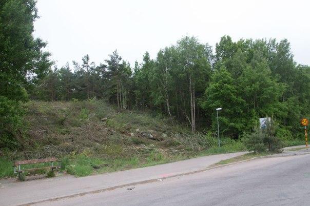 Här gick tidigare kraftledningen. Foto: Per Hallén 2016.