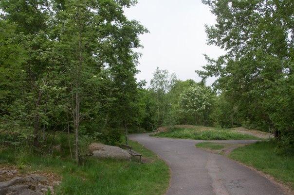 """Promenadväg på """"västra kullen"""" idag, i framtiden är det tänkt att höghus skall stå till vänster om vägen. Foto: Per Hallén 2016."""