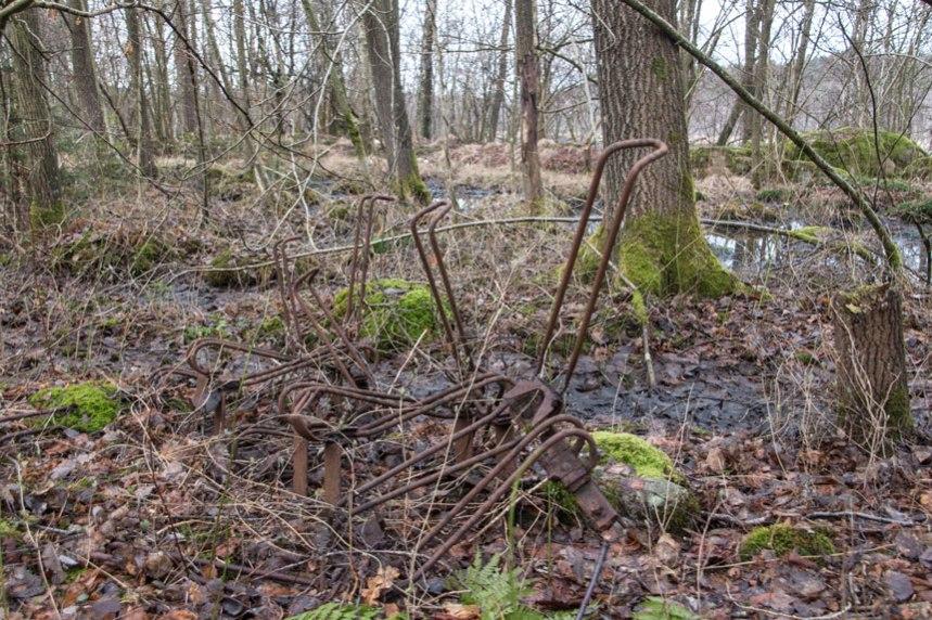 I skogen finns övervuxna cykelställ, en rest efter campingen. Foto: Per Hallén 2016
