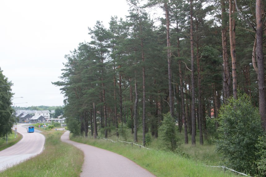Skogen till höger i bild döljer ett område med äldre åkrar.