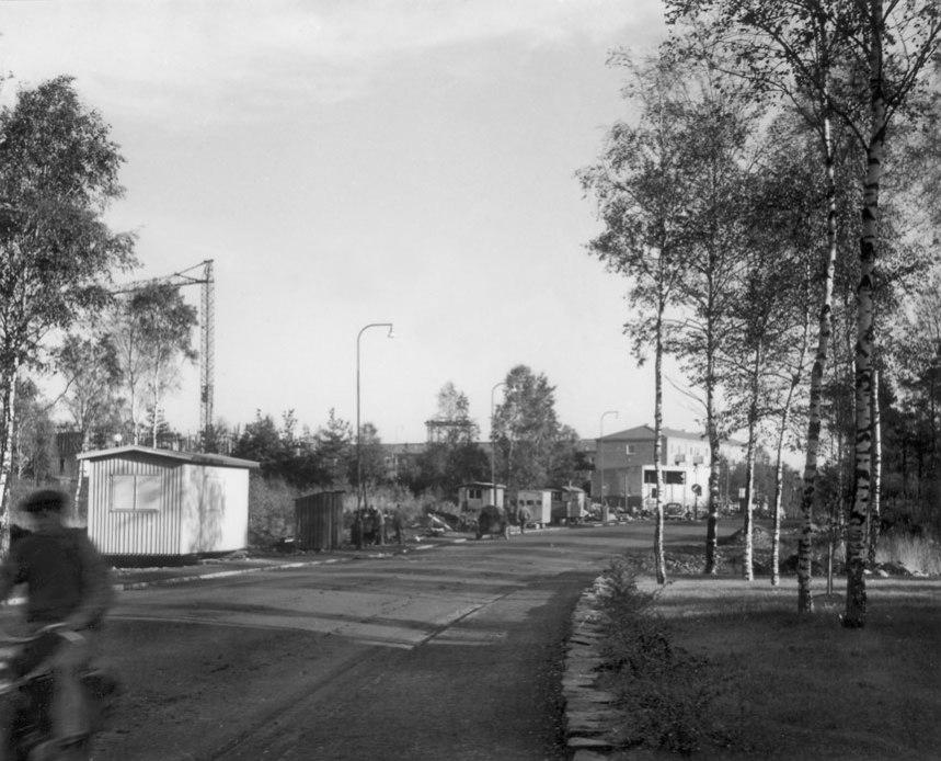 Rosendalsgatan under slutet av 1950-talet. Foto: Göteborgs stadsmuseum.