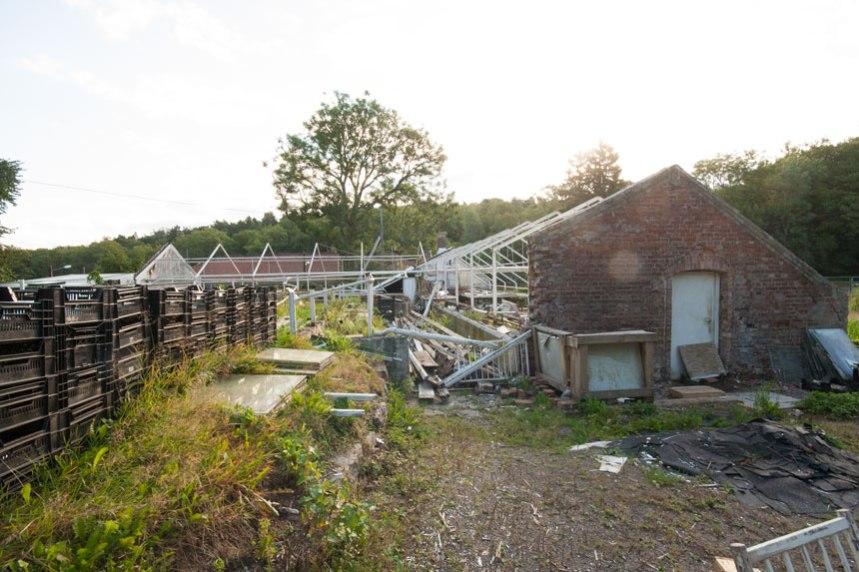 Rivningen av växthusen. Foto: Per Hallén 2011