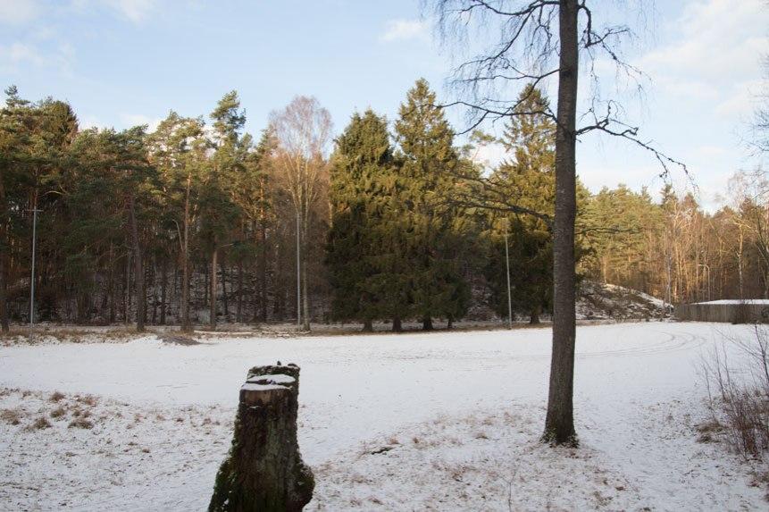 Grusplanen vid Härlanda tjärn skall enligt planen bebyggas med en skola.